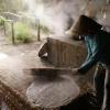 Tìm hiểu nghề làm bánh tráng miền Tây