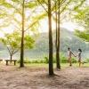 Tour du lịch Hàn Quốc trọn gói khởi hành từ Hải Phòng - Đảo Nami