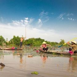 Tour du lịch miền Tây: Sài Gòn - Đồng Tháp - Cần Thơ - 2 ngày đi từ Sài Gòn