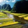 Tour du lịch Ninh Bình trọn gói đi từ Hà Nội - Tam Cốc Bích Động