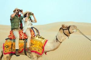 Trải nghiệm cưỡi lạc đà ở Sa mạc Safari Dubai